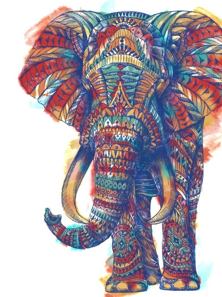 Verzierter Elefant (Aquarell Version) von BioWorkZ