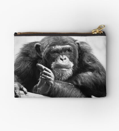 You talking to me? Studio Pouch