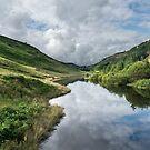Llyn Brianne Reservoir by Ann Garrett