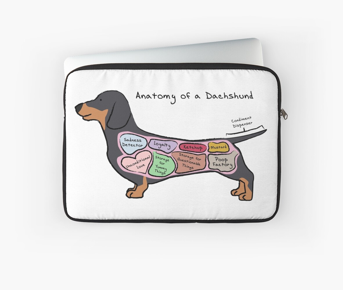 Fundas para portátil «Anatomía de un Dachshund» de MommySketchpad ...