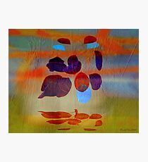 Magritte stung by summer Photographic Print
