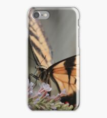 Easter Tiger Swallowtail v1 iPhone Case/Skin