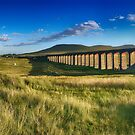 Ribblehead Viaduct by Mark Higgins
