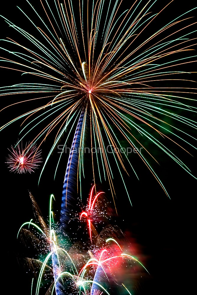 Celebration of Freedom by Shannon Beauford