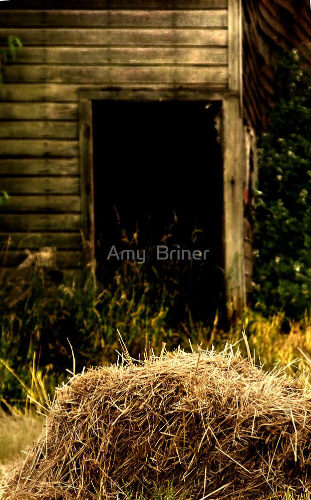 Bale of Hay by Amy  Briner