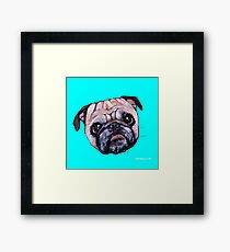 Butch the Pug - Cyan Framed Print
