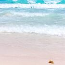 Pink Sand, Blue Ocean by Southern  Departure