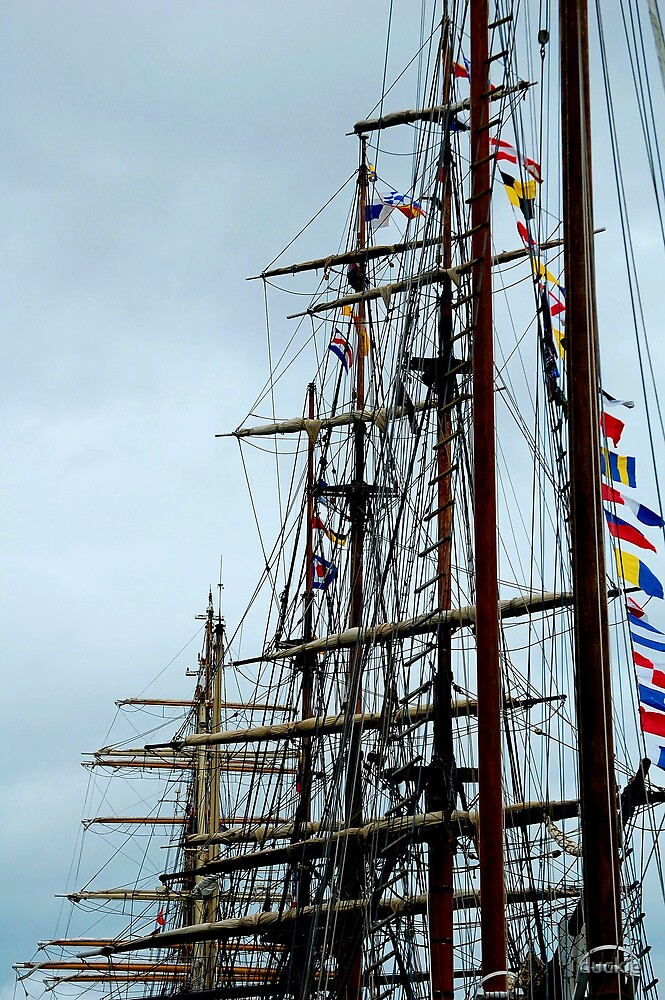tall ships mast by duckie