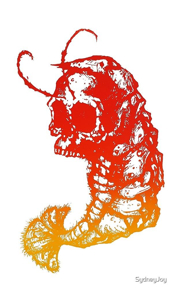 Shrimp Skull