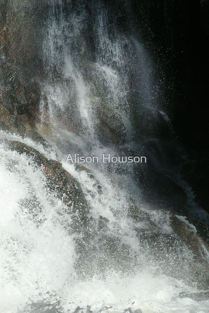 Steavenson Falls by Alison Howson