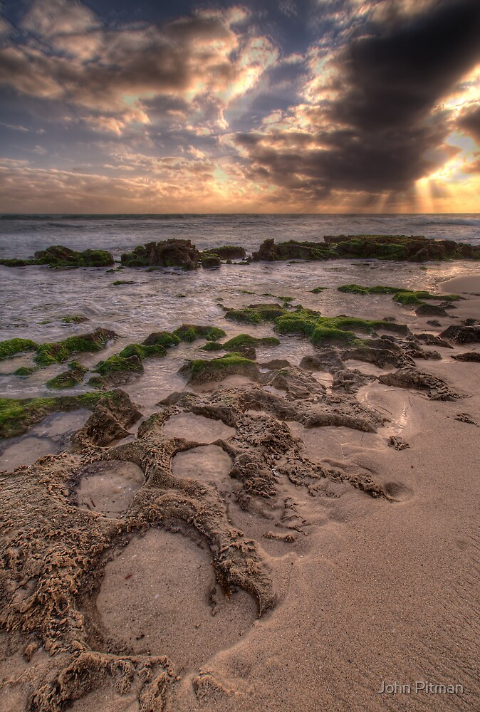 Nature's Footprints by John Pitman