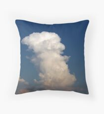Odd Shaped Throw Pillow