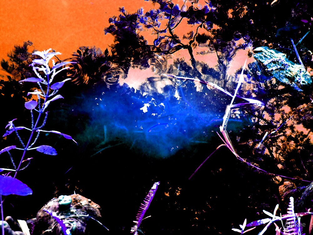 Reflections in an Abstract World by Nukee