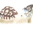 Tortoise and Butterfly by Linda Ursin