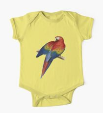 Illustration of A Scarlet Macaw Vector Kids Clothes
