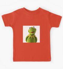 Kermit The Frog Le MEME Kids Clothes