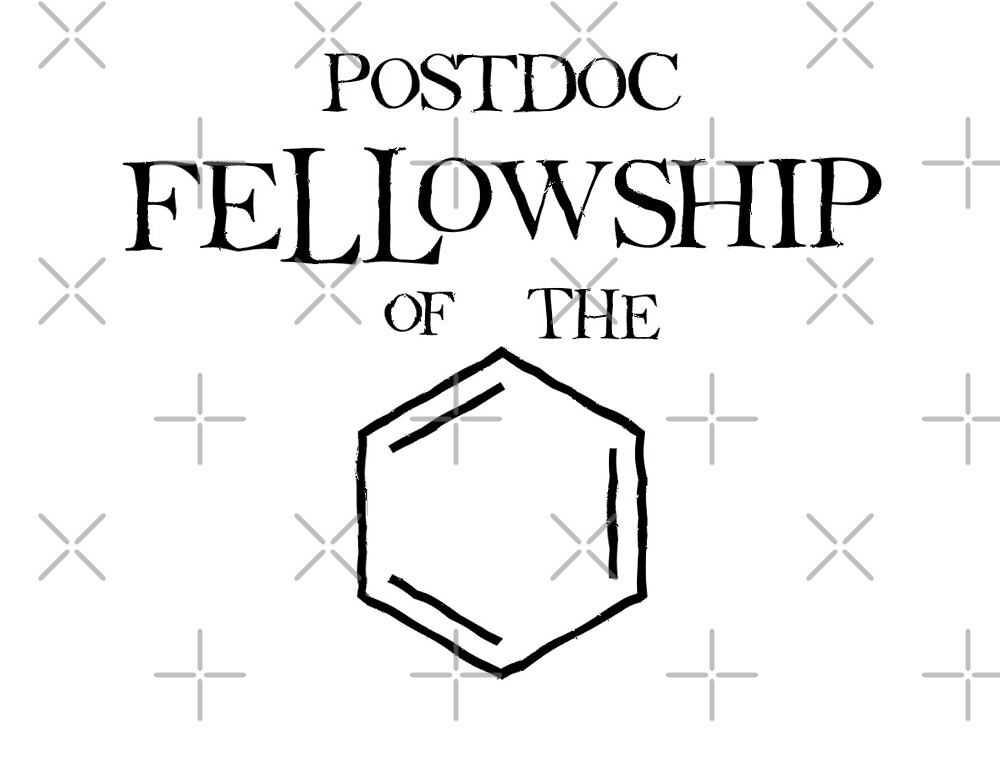 Postdoc Fellowship of the Ring by stoppersays