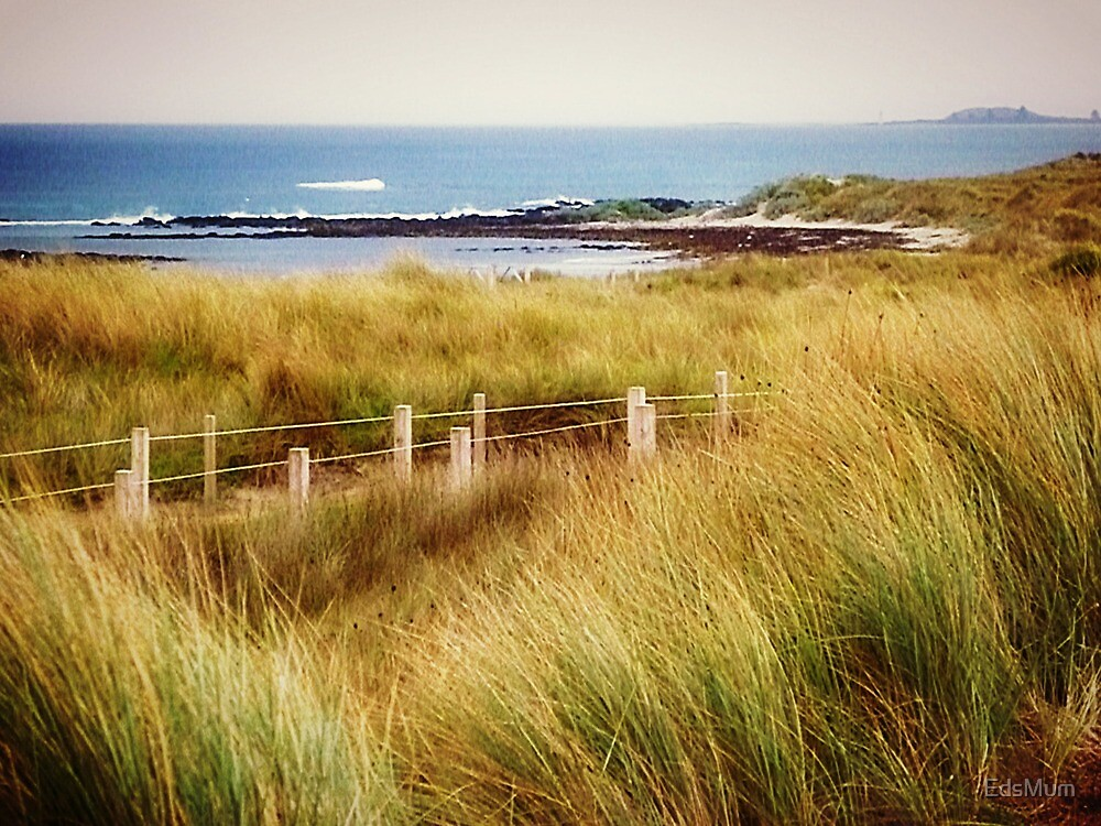 *Killarny a small Beach - Warrnambool, Vic. Australia* by EdsMum