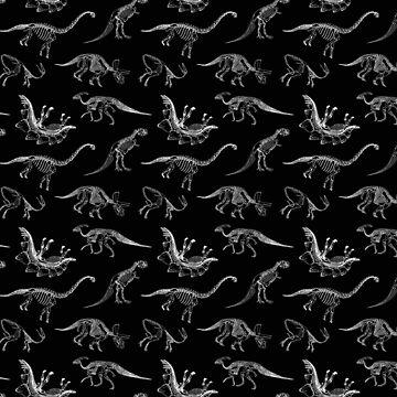 Dinosaur Skeletons by norithiel
