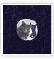 Cats in love. grey and black / photo of cute couple of cats Sticker