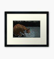 Deep, Dark Water Framed Print
