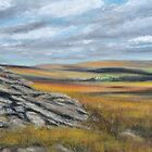 On Dartmoor by Alexandra Lavizzari