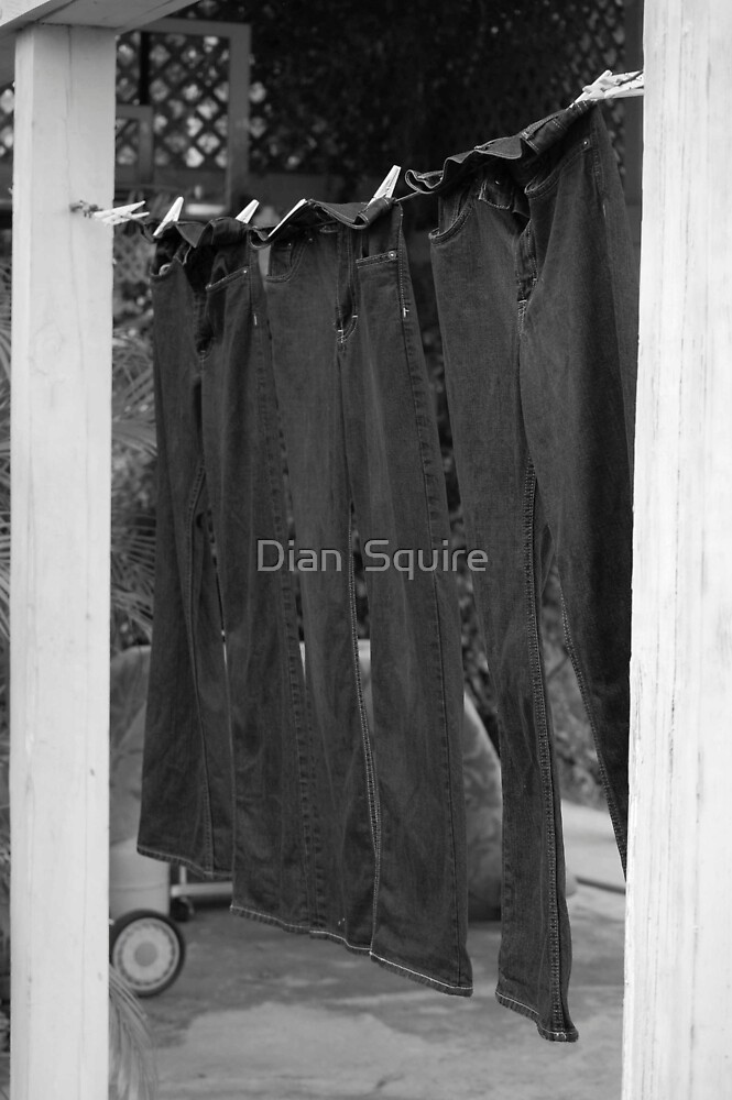 Jeans by Dian  Squire