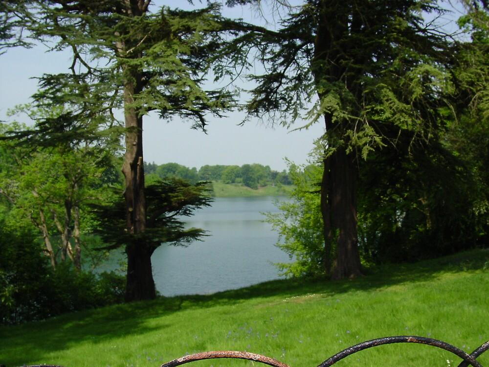 Enlish park land by Richard Elston