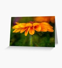 Zinnia Delight Greeting Card