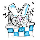 Sleeping rabbit by rafo