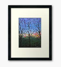 Syon Trees Framed Print