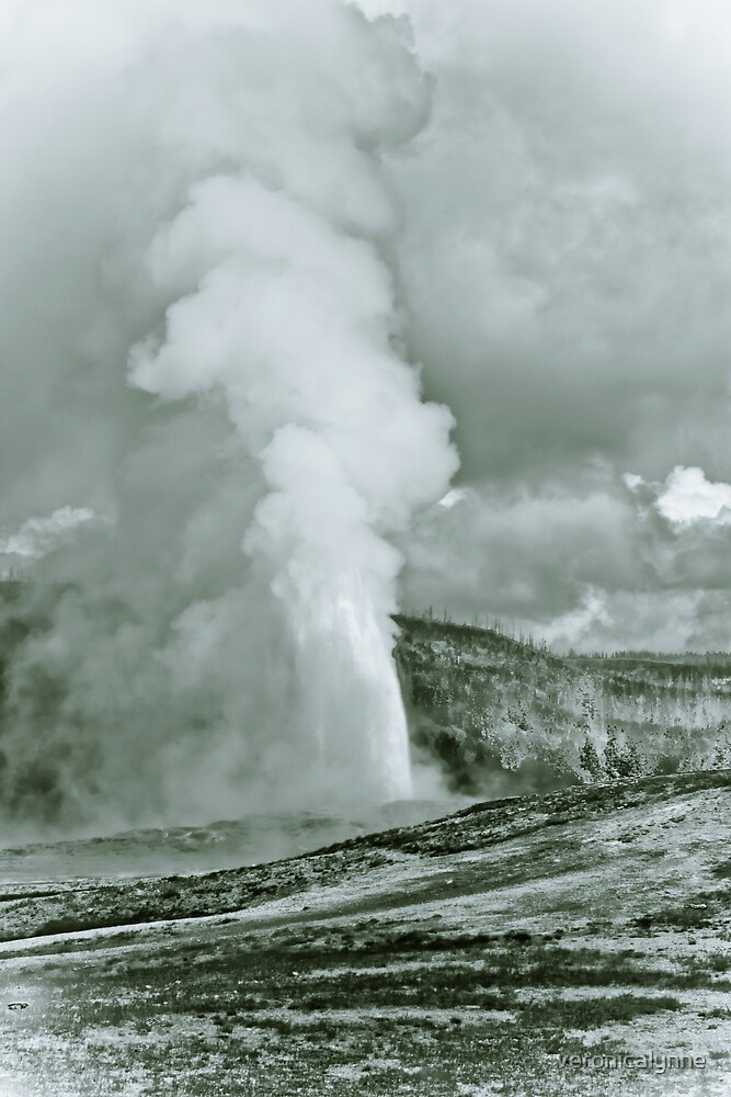 Yellowstone in Black and White #3 by veronicalynne
