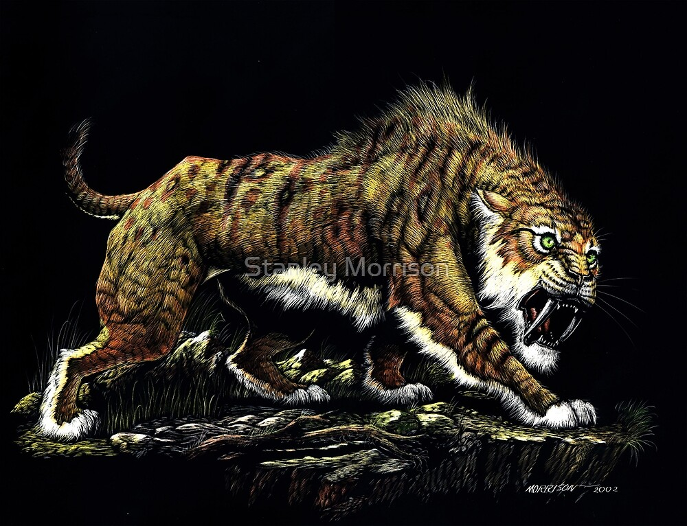Sabertooth by Stanley Morrison