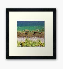 Stone shore on the lake Framed Print