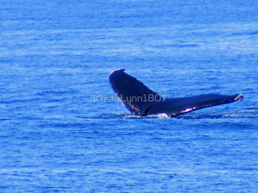 Humpback Whale Diving by KristaLynn1807