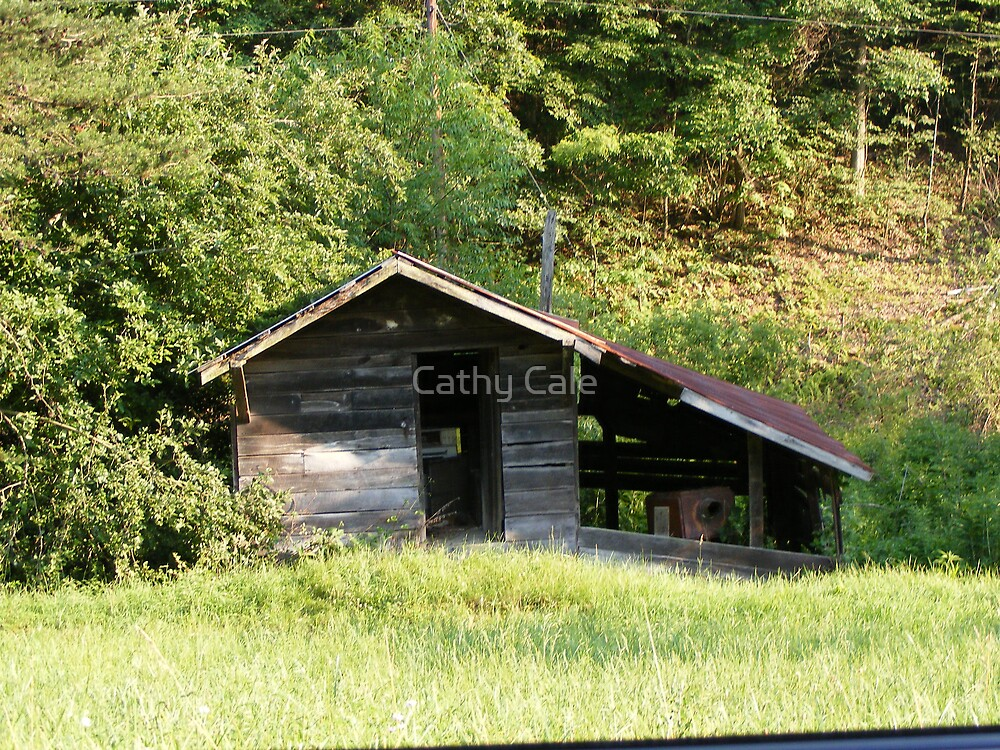Old Shed by Cathy Cale