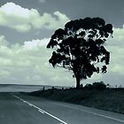 A lonely highway by iamelmana