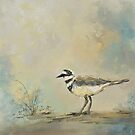 Shore Bird 2945 by Jai Johnson