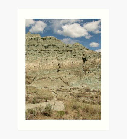 Turtle Cove Formation in Eastern Oregon Art Print