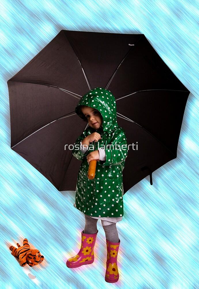 Raining by Rosina  Lamberti