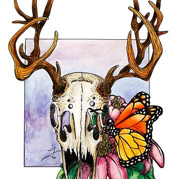 Deer Skull & Butterfly by FontaineN