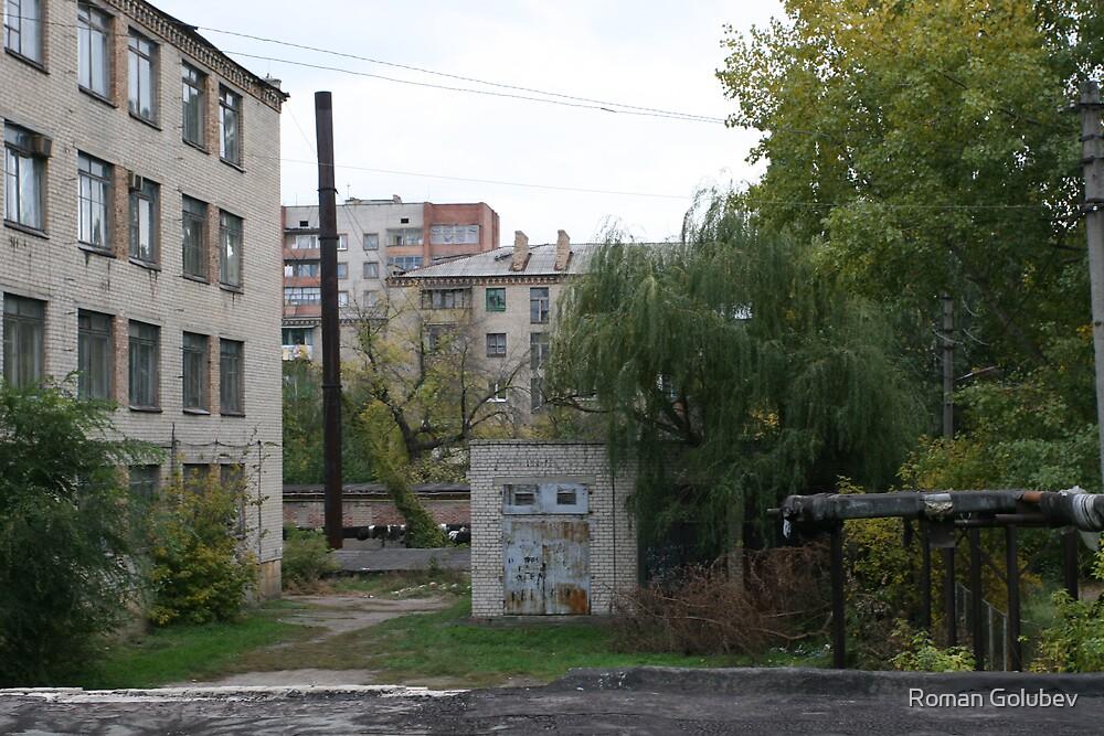 Behind the garages by Roman Golubev