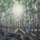 Sunrise at Barmah Forest by Thanh Duong