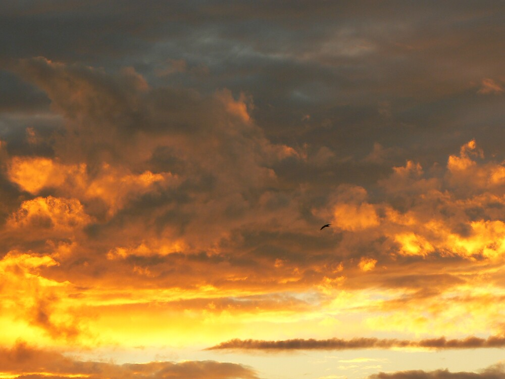 Whispy Clouds by adelethomas