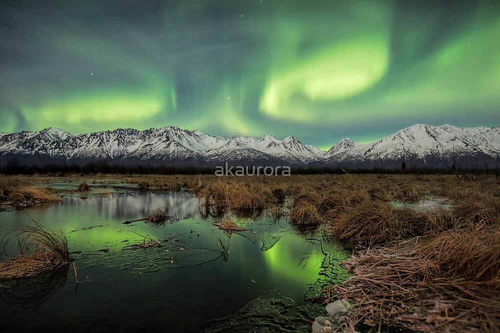 Aurora Waves III by akaurora