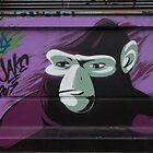 Ape by Mythos57