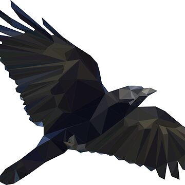 Geometric Low-Poly & Distressed Crow by Tractorjaws