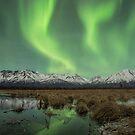 Auroral Sway by akaurora