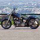 Harley Davidson by Mythos57
