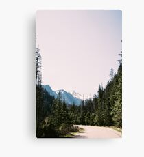 Mountains Forest and Road Canvas Print